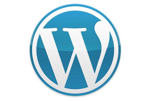conception site internet wordpress paris