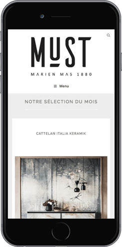 creation site mobile wordpress montpellier