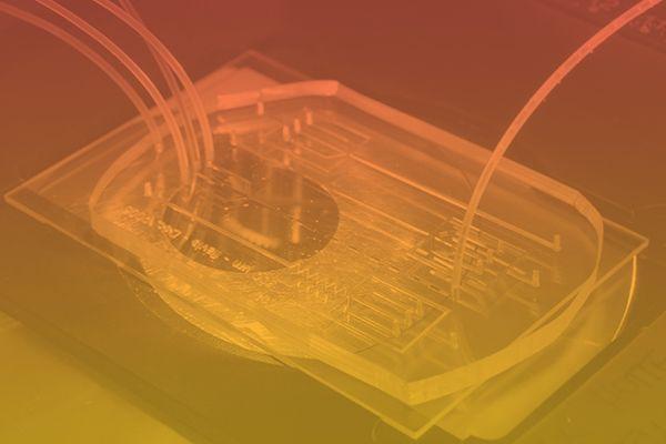 conception logo pole scientifique universite montpellier