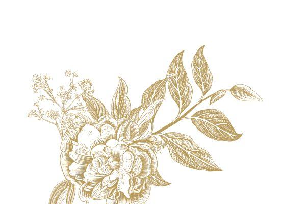 creation logo boutique mariage